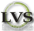 LVS Pro Accountants & CPA Zeeland, Holland Michigan | Business Strategies Page | West Michigan
